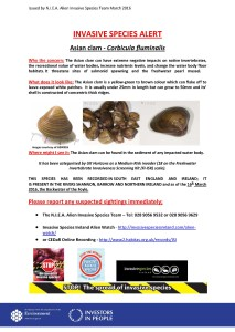 Asian Clam species alert with spelling mistake fixed JPEG image only